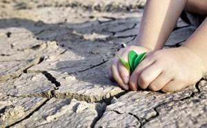 Kêu gọi hỗ trợ, ứng phó với biến đổi khí hậu