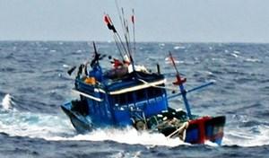 Tìm kiếm ngư dân mất tích khi tàu cá gặp nạn