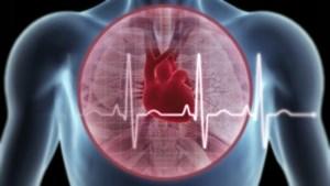 Khoảng 200.000 người tử vong mỗi năm do tim mạch