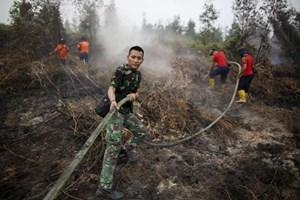 Khói độc hại ở Đông Nam Á khiến 100 nghìn người chết sớm