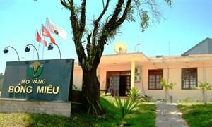 Không đồng ý với kiến nghị áp thuế 0% của Công ty Vàng Bồng Miêu