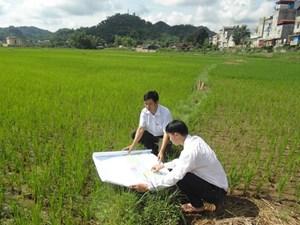 Kiểm kê đất đai năm 2019 và lập quy hoạch sử dụng đất quốc gia