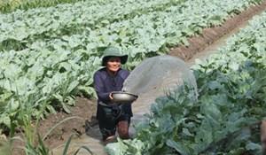 Kiên Giang: Chú trọng công tác giảm nghèo