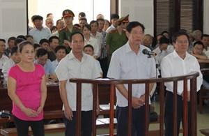 Kiến nghị về vụ án buôn lậu gỗ trắc ở Quảng Trị