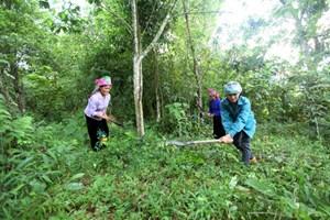 Lai Châu: Nỗ lực giảm nghèo bền vững