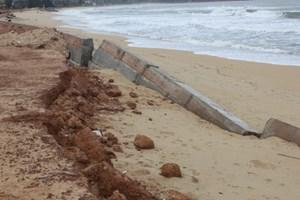 Làm rõ nguyên nhân sập kè bờ biển Tam Quan