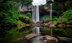 Làm thủy điện trong khu bảo tồn: UBND tỉnh Gia Lai phản đối quyết liệt