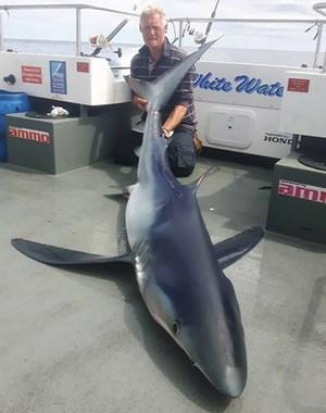 Lần đầu ra khơi, câu được cá mập xanh lớn nhất nước Anh