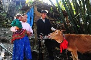 Lạng Sơn: Giảm 1,5% tỷ lệ hộ nghèo trong 6 tháng đầu năm