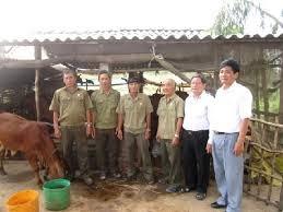 Lào Cai:  Xóa 31 nhà tạm cho Hội viên Cựu chiến binh