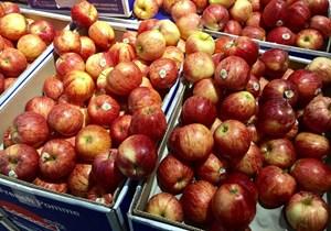 Loạn xuất xứ trái cây nhập ngoại