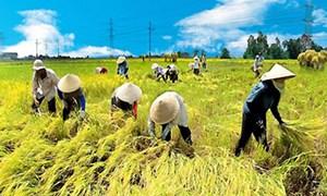 Luật phí và lệ phí: 'Cởi trói' cho nông nghiệp