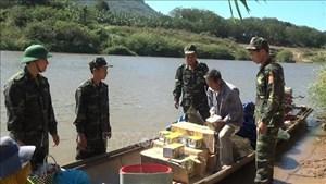 Lực lượng Bộ đội Biên phòng tỉnh Quảng Trị bắt giữ gần 2 tấn pháo lậu