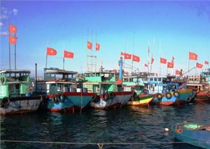 Lý Sơn (Quảng Ngãi) khai thác thủy hải sản đạt gần 32.000 tấn