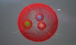 Máy gia tốc hạt lớn (LHC) phát hiện hạt hạ nguyên tử mới