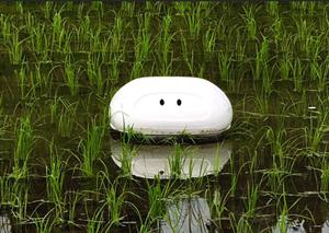 Người Nhật sáng chế robot 'làm việc' ngoài ruộng lúa