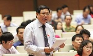 Một số ý kiến thảo luận Báo cáo nhiệm kỳ của Quốc hội khóa XIII