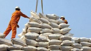 Nâng sức cạnh tranh cho gạo Việt