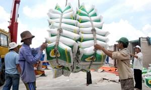 Nâng sức cạnh tranh cho nông sản xuất khẩu