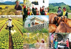 Ngành nông nghiệp phấn đấu tăng trưởng 3,05% năm 2017
