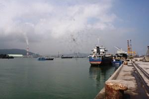 Nghi Sơn (Thanh Hóa): Cá chết có thể do thiếu ô xy