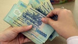 Người tham gia BHXH tự nguyện chỉ đóng 22% của mức thu nhập đăng ký