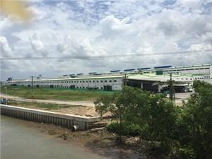 Nhà máy giấy Lee & Man gây ô nhiễm môi trường: Chủ trương bất nhất, ai chịu trách nhiệm?