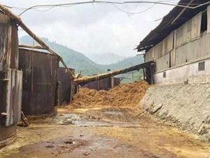 Nhà máy giấy Thuận Phát đầu độc Suối Cái