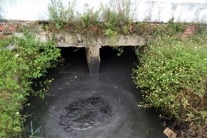 Nhiều doanh nghiệp xả thải độc hại ra môi trường