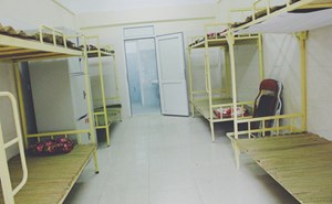 Nhiều trường đại học mở cửa đón người vô gia cư