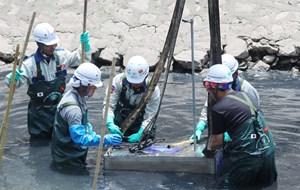 Nỗ lực làm sạch sông Tô Lịch
