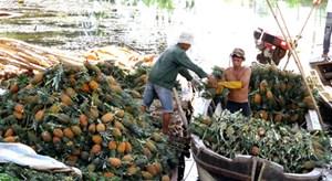 Nông sản Việt và cơ hội vào đất Thái