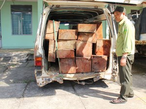 Ô tô biển số xanh chuyển gỗ lậu