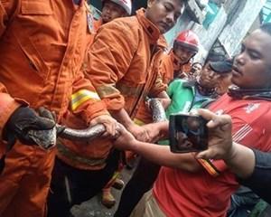 Ổ trăn 16 con 'xâm chiếm'ống nước nhà dân