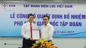 Ông Võ Quang Lâm làm Phó Tổng Giám đốc EVN