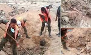 Phát hiện hố chôn 150 người ở thành cổ Palmyra