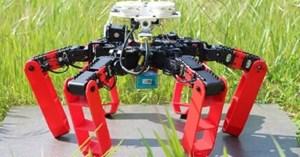 Robot AntBot có thể di chuyển mà không cần GPS