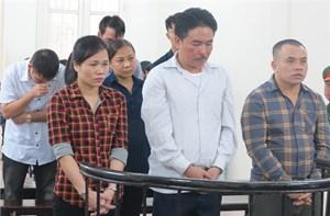 Phạt tù các đối tượng trong đường dây tổ chức tour du lịch 'ảo'