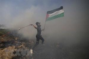 Palestine kêu gọi biểu tình phản đối Kế hoạch Hòa bình Trung Đông
