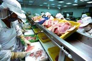 Quản lý an toàn thức ăn: 'Chặt' cho vật nuôi, 'lỏng' cho người, được sao?