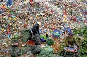 Quản lý chất thải rắn sinh hoạt: Cần chế tài mạnh hơn để xử lý