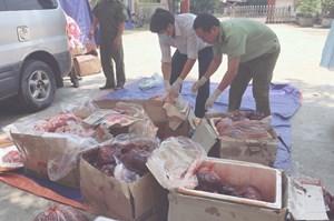 Quảng Bình: Bắt giữ hơn 2,5 tạ nội tạng động vật không rõ nguồn gốc