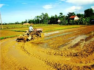 Quảng Nam phân bổ gần 37 tỷ đồng cho chương trình nông thôn mới