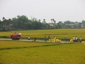Quảng Nam: Phấn đấu có 119 xã đạt chuẩn nông thôn mới