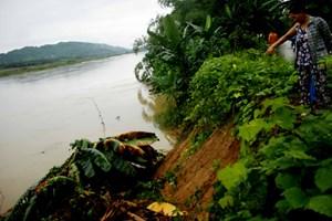 Quảng Ngãi: Một người mất tích trong mưa lũ