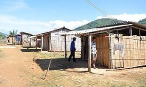 Quảng Ngãi: Phân bổ nguồn vốn định canh, định cư