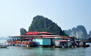 Quảng Ninh cưỡng chế di dời Nhà bè Hồng Đậm