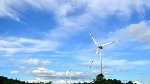 Quảng Trị phát triển mạnh năng lượng tái tạo