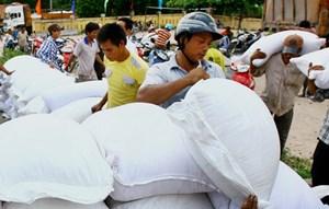Quyết định hỗ trợ gạo cho tỉnh Bình Định