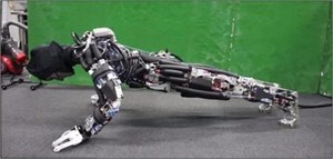Robot biết chống đẩy và toát mồ hôi